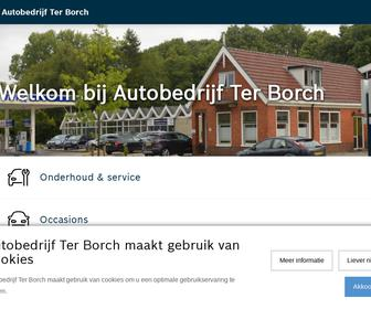 http://www.autoterborch.nl
