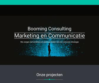Booming Consulting