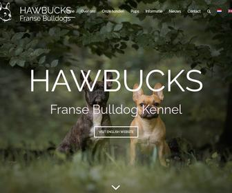 Hawbucks Franse Bulldogs