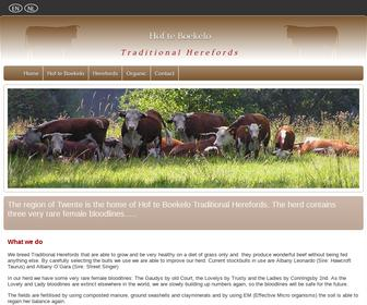 Hof te Boekelo - Traditional Herefords