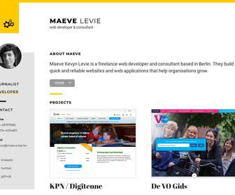Levity - Web Development & Consultancy
