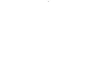 US Madhouse Stores B.V.